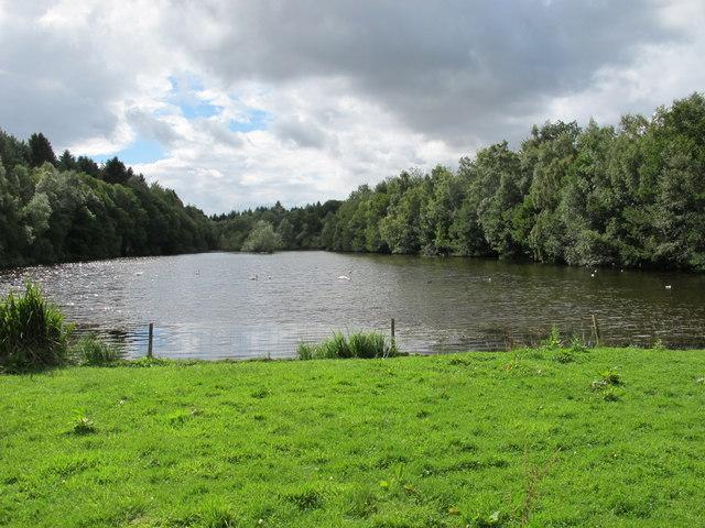 Duck Pond near Brodie Castle