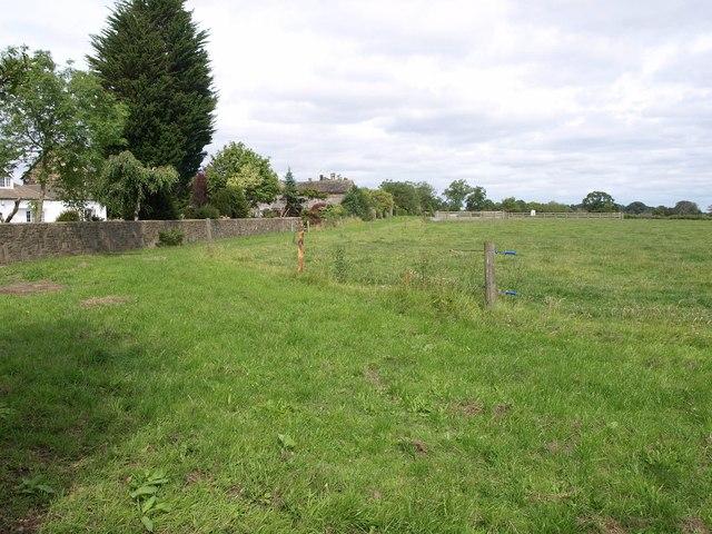 Pasture at Brandon