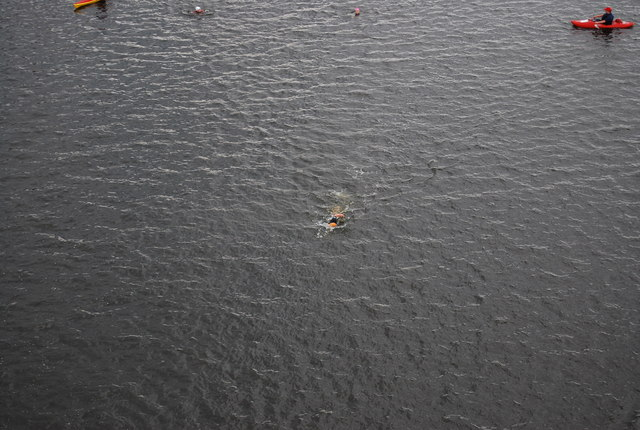 Lead swimmer, British Gas Swim, Royal Victoria Dock