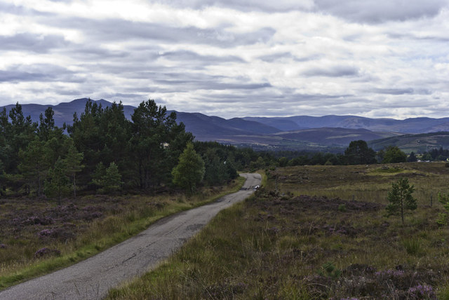 Road down to Migdale and Bonar