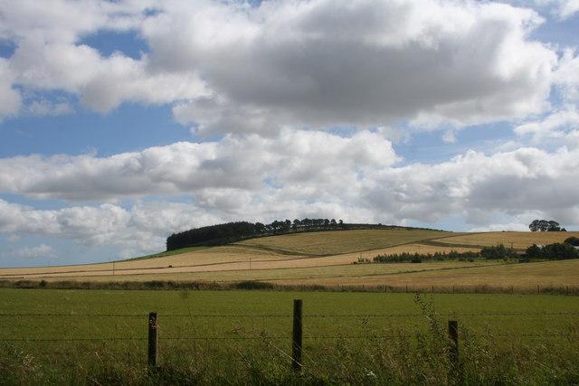 Fields by Whitecross