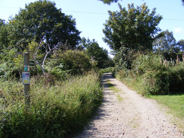 Bridleway to Walberswick Common
