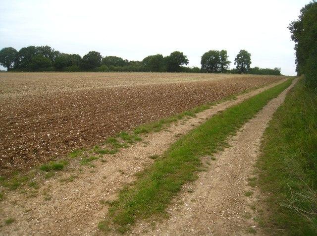 Wayfarer's Walk by South Wood