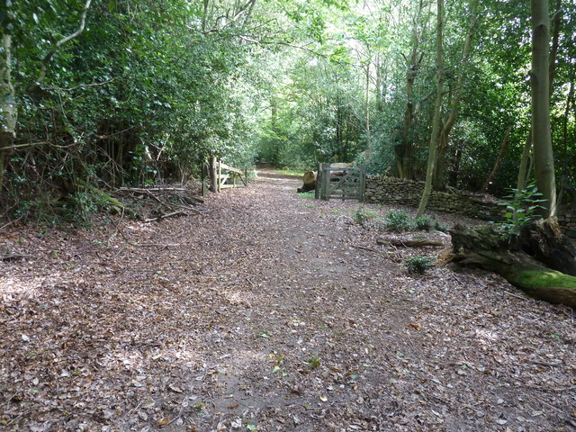 Gateway to Hollist Common