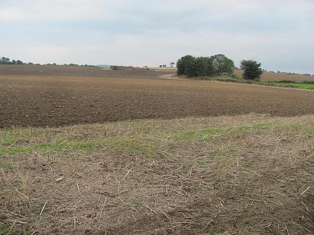 Ploughed field, Kingscavil