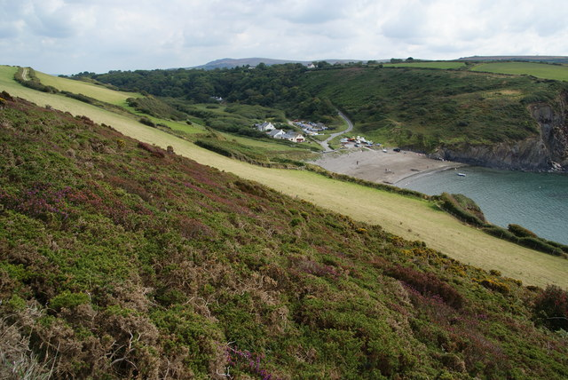 Hillside above Pwllgwaelod