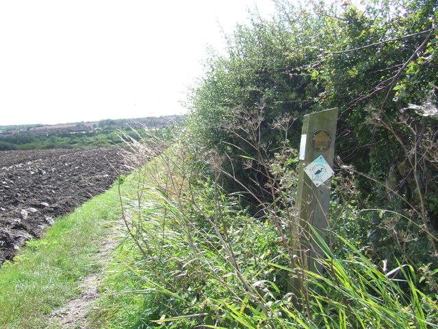 Footpath near East Rainton