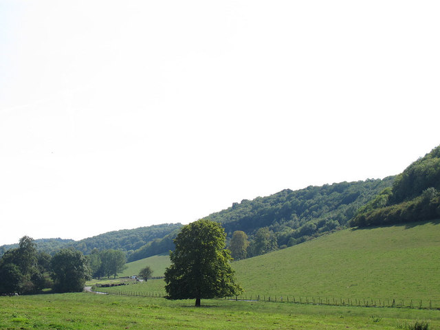 Woldingham Valley