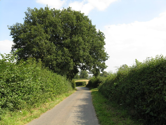 Lane from Street Court