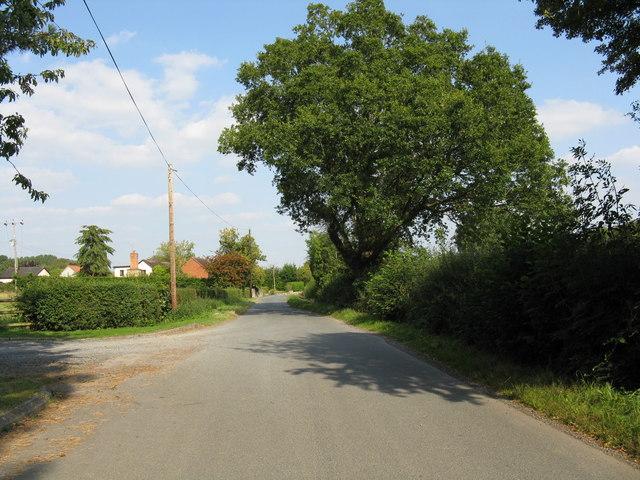 Looking east from Hazeldene