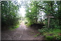 SU9130 : Bridleway crossroads, Black Down by N Chadwick