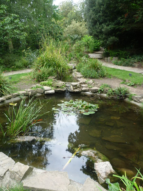 Water garden in The Rookery