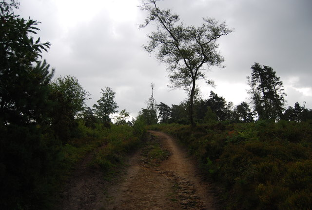 Serpent Trail, Black Down