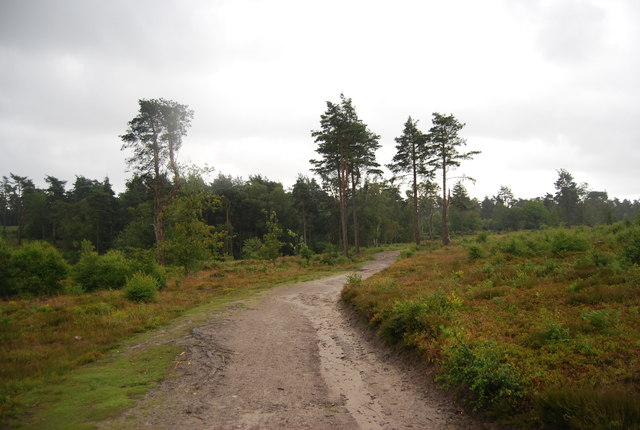 Serpent Trail and Sussex Border Path