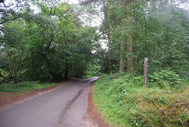 Tennyson's Lane