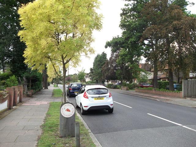 Barnfield Wood Road