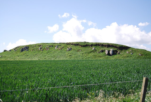 Disused quarry in a wheat field
