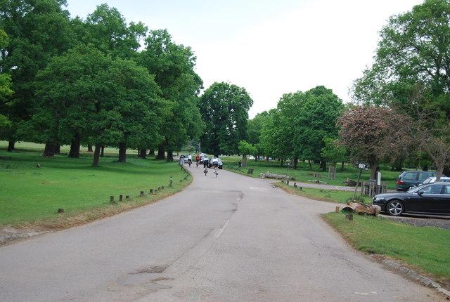 Vehicular road in Richmond Park