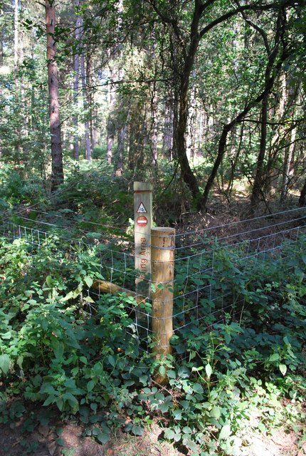 Demarcation Fence - Mountain Bikers Area Rowney Warren Woods
