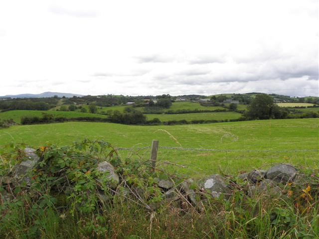 Tullynacarnagh Townland
