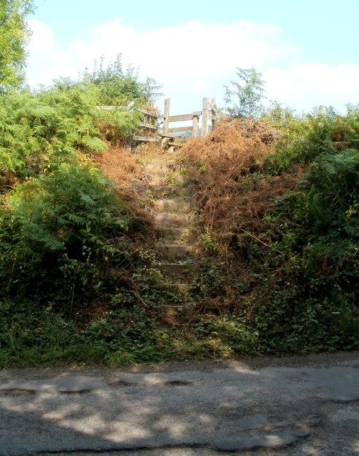 Steps up to a footpath near Llantilio Pertholey