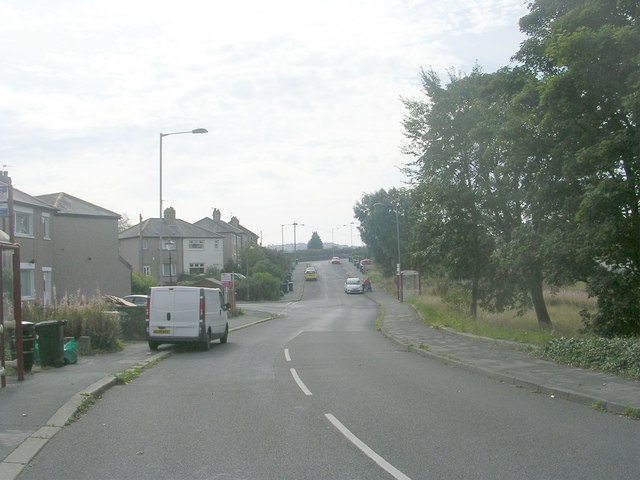 Cliffe Lane West - viewed from Cliffe Avenue