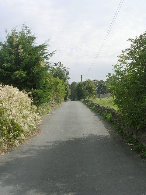 Footpath - Cliffe Lane West