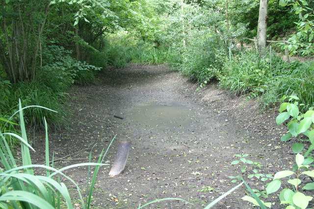 Pashley Manor dried-up pond