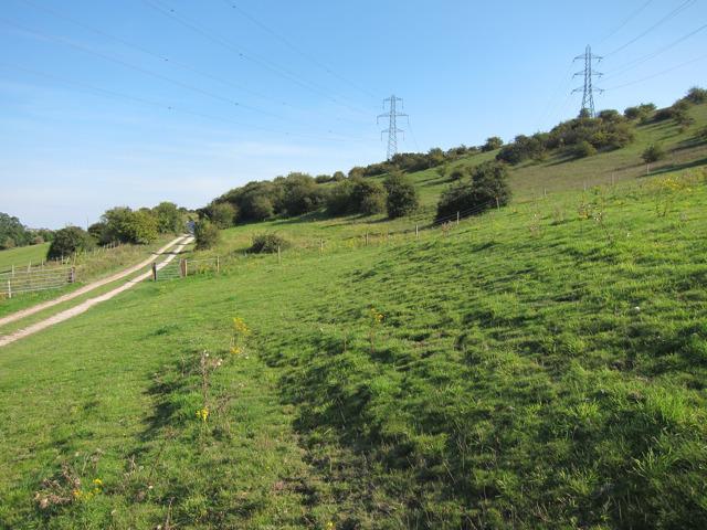 Farmland near Mile Oak Farm