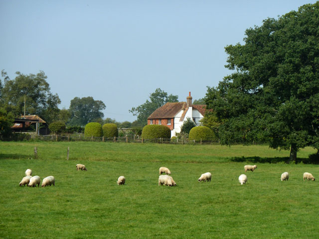 Sheep and Woodlands Farm Cottage