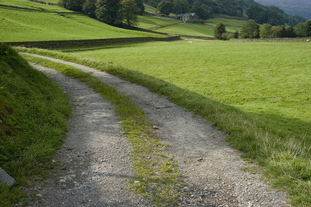 Farm track to Hollin Root