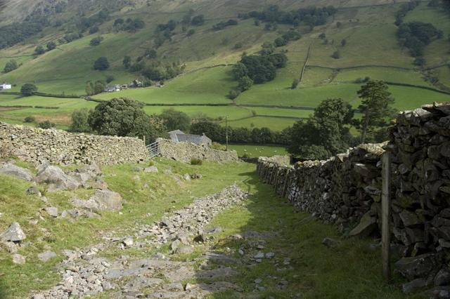 Bridleway above Hollin Root
