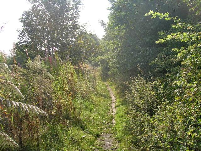 Path, Corker Bottoms, Sheffield