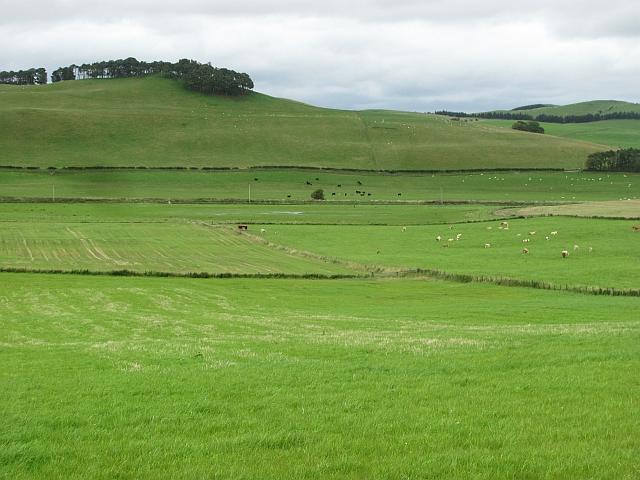 Farmland along the Biggar Water