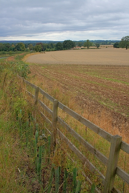 Roadside Fence