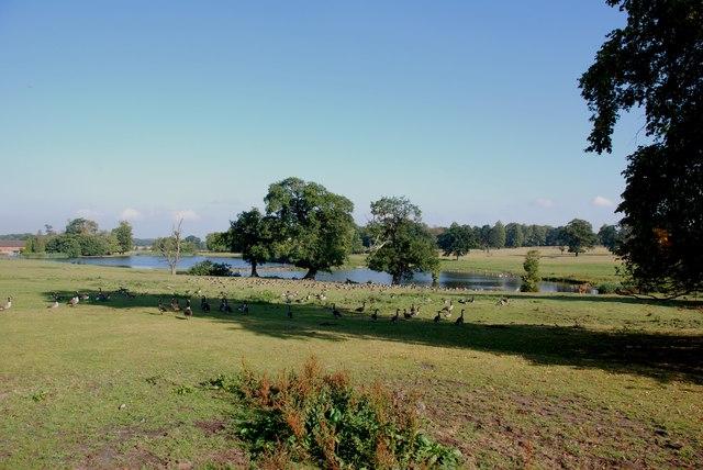 Hatherton Pools, Cannock