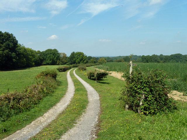 Drive to Westlands Farm