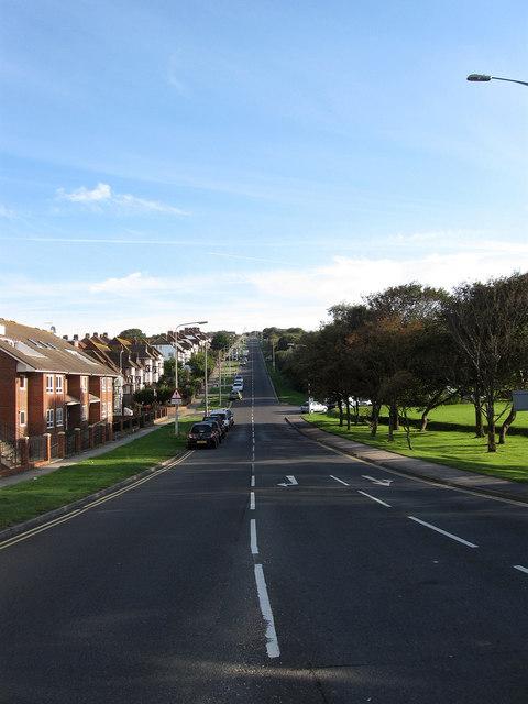 Wilson Avenue