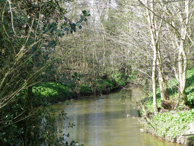 River Lyne near Ulgham