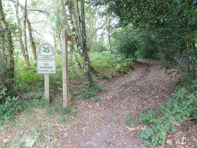 National Trust sign for Woolbeding Common