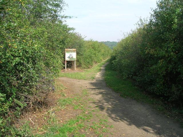 Path to Treeton Dyke