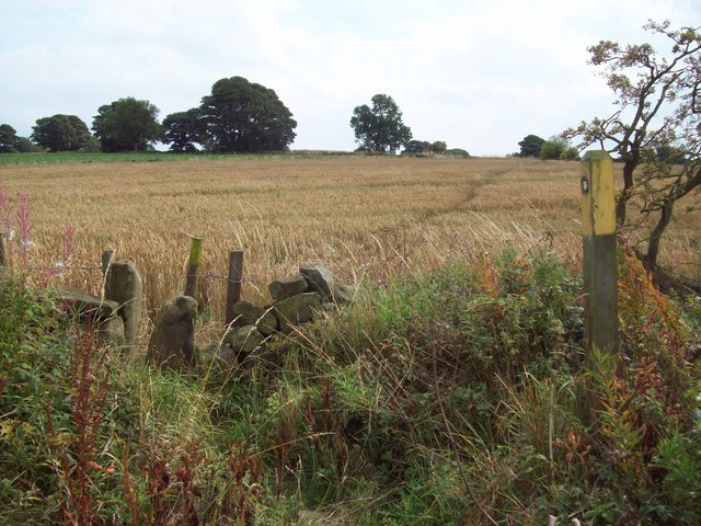Footpath and Squeezer Stile near Hilltop