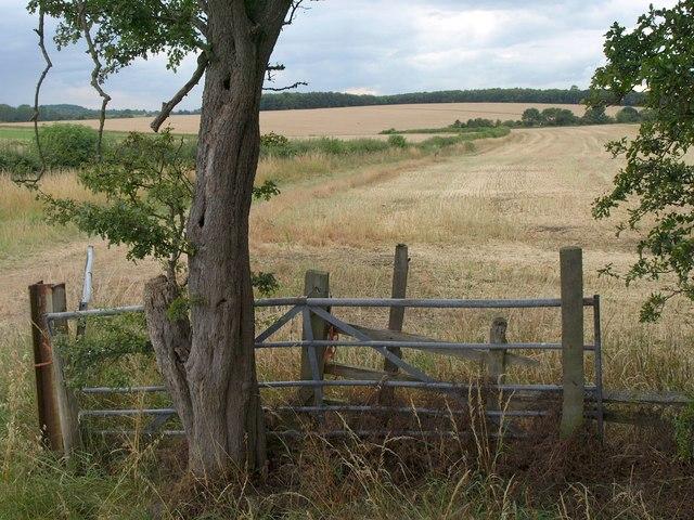 Harvested field near Barnbow Carr