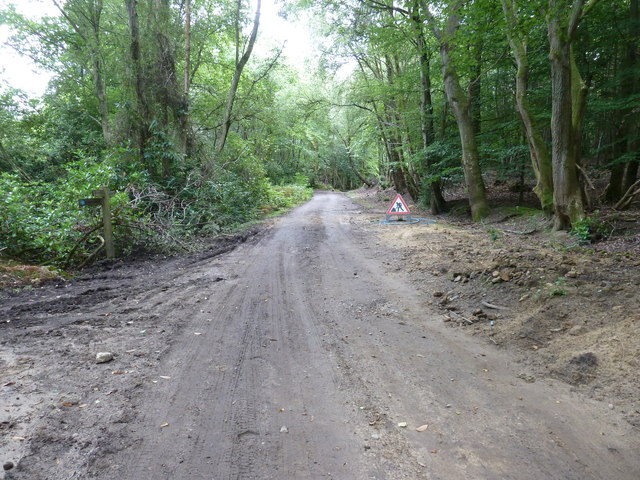 Major roadworks on Restricted Byway by Wispers Copse