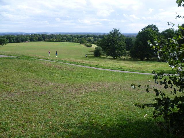 Oxleas Meadow