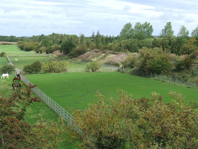 Fields at Leamside