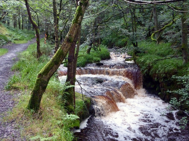 Weir above the site of Lower Lumb Mill, Colden Clough