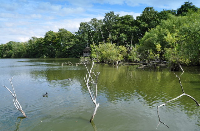 Nature Reserve Pool
