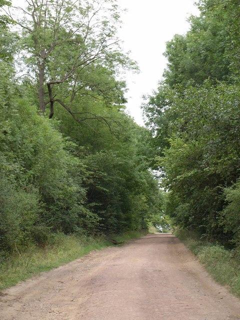 Parlington Lane