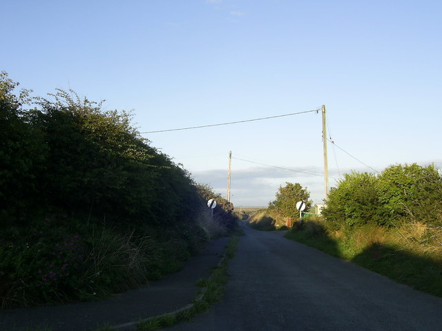 Country road near St David's